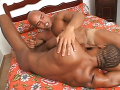 Good-looking black Capoeira players with muscles hooking up for hot gay sex. You`ll find these guys in bed making out and exposing those beefy bods before one of them begs to have his asshole plugged with a big black cock.